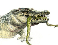 Dinosaur and Archosaur illustrations