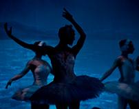 """Ballet: """"Il Lago Dei Cigni"""""""