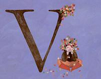 The Alphabet Series V W X Y Z