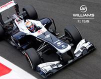 Official Williams F1 Team - 2013 Facebook App