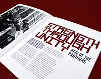 Strength Through Unity: Rise of the Panthers