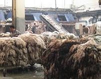 china tannery
