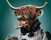 Meet Captain Bull Anderson