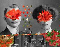 Collage set / La Berenjena