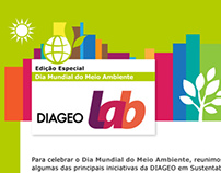 DIAGEO | newsletter and facebook post