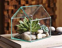 Farnsworth™ Terrarium for Design Ideas Ltd.