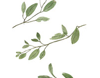 Botanical/Creatures