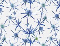 patterns of dried herbal