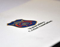 MCA Annual Report 2012-13