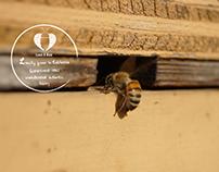 Love A Bee Honey