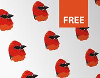 2014: Serin Du Cap | Free Vector