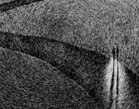 Fingerprint - Le Chemin