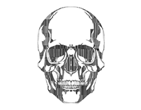Barcode Skull