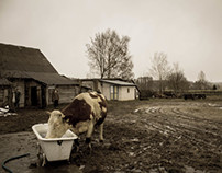 Farm portrait.