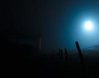 Night Fog Studies