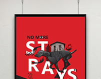 Stray Poster Battle
