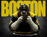 Boston Sports Co Designs