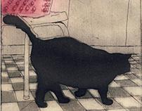 Sam, portrait of a cat