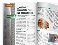 Revista Coplana Produtor Edição 84