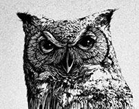 GLITCHED OWL
