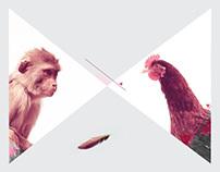 Chicken Monkey Branding