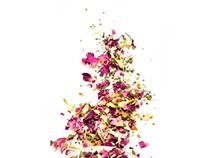 Wisdom Nectar Tea - portfolio