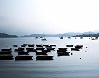 Peaceful waterfront - Tai Mei Tuk (大美督)