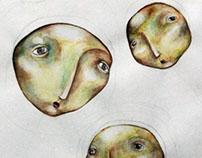 Caras de luna