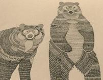 Bears a'plenty