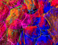 Art - Electric Flowers
