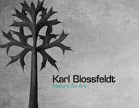 Blossfeldt Book