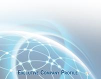 CON.NEXO' Company Profile - y 2013
