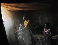 Congo Women Website