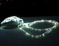 Video mapping+jewellery