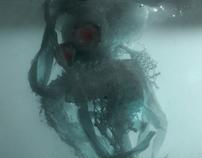 Water phantoms