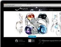 Monis web design