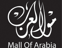 "Mall Of Arabia Campaign "" My Graduation Project """