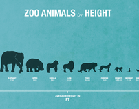 Zoo Animal Infographic Posters