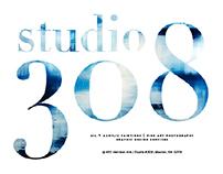 Studio 308   Oil & Acrylic Paintings