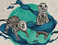 Animals illustration(2)