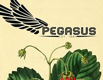 Pegasus Redesign