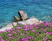 Spring time in Greece
