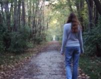 The Walk (undergrad multi-media)