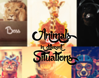 Animals in different situations