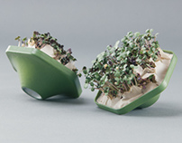 'Patch' - Indoor Microgreens Grow Packet
