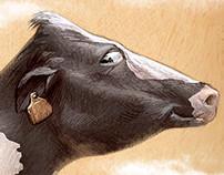 Gijón Cattle Show