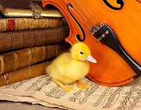 Corrales Music Program Guide