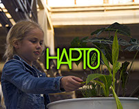 Hapto (interactive installation)