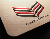 Professional Premium Logo