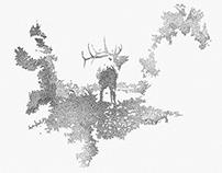Elk Stippling Project